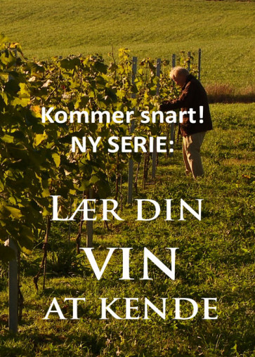 Lær din vin at kende - Mark og kælder