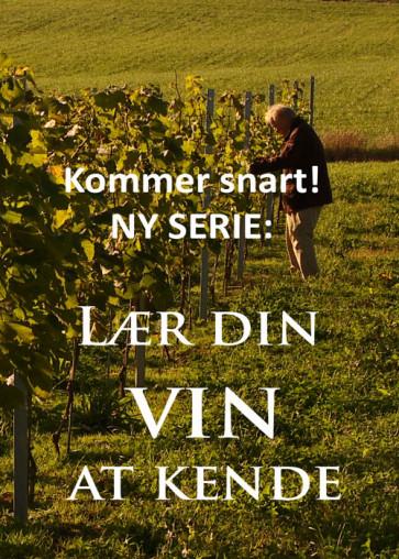 Lær din vin at kende - De store druer